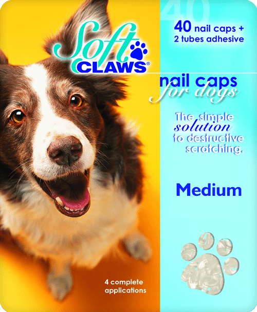 Dog Soft Claws Reviews